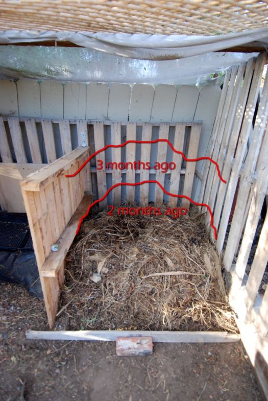 Compost_03