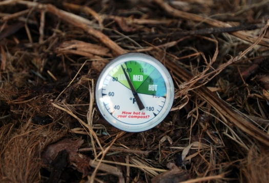 Compost_06