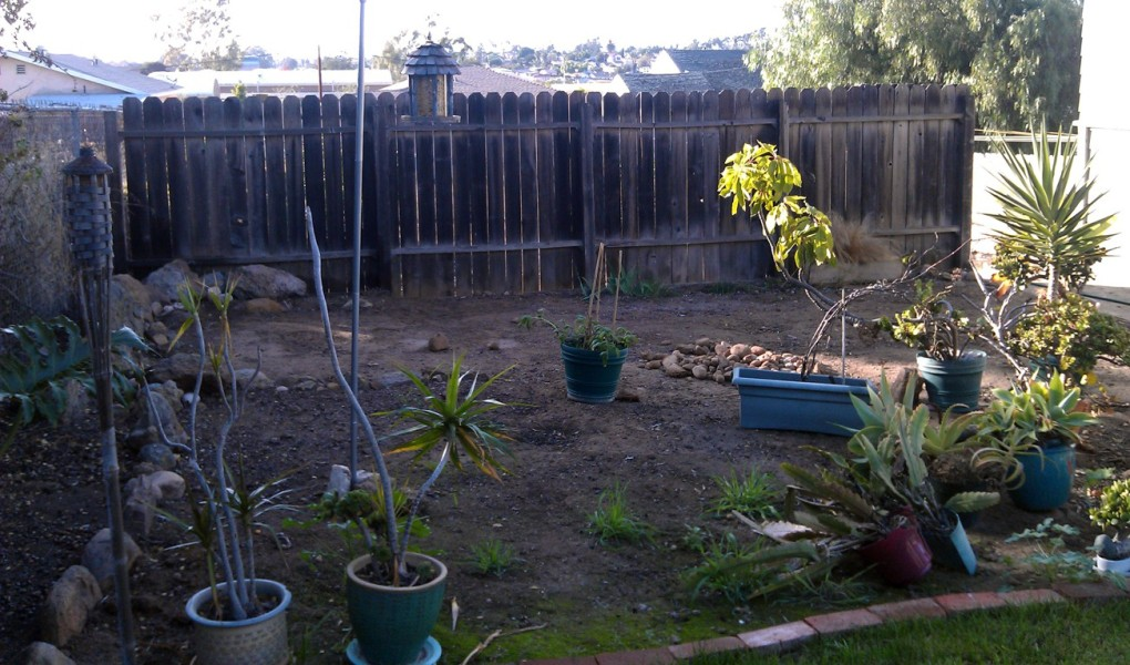 Removing the privacy fence_01