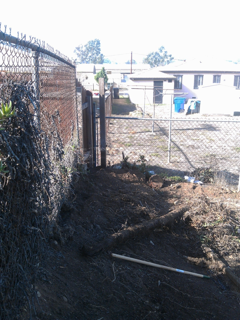 Removing the privacy fence_09