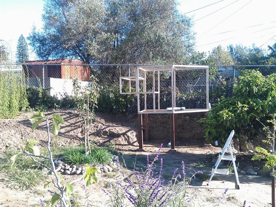 Chicken Coop 016