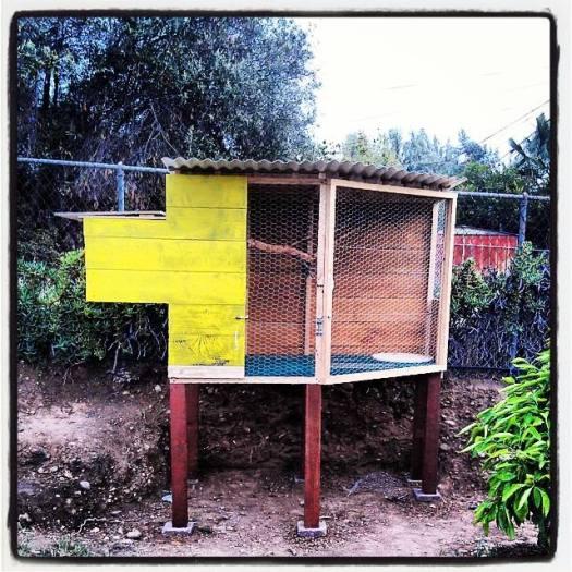Chicken Coop 019