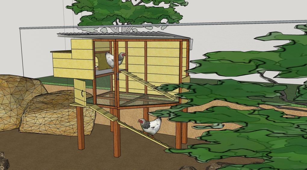 Chicken Coop 02