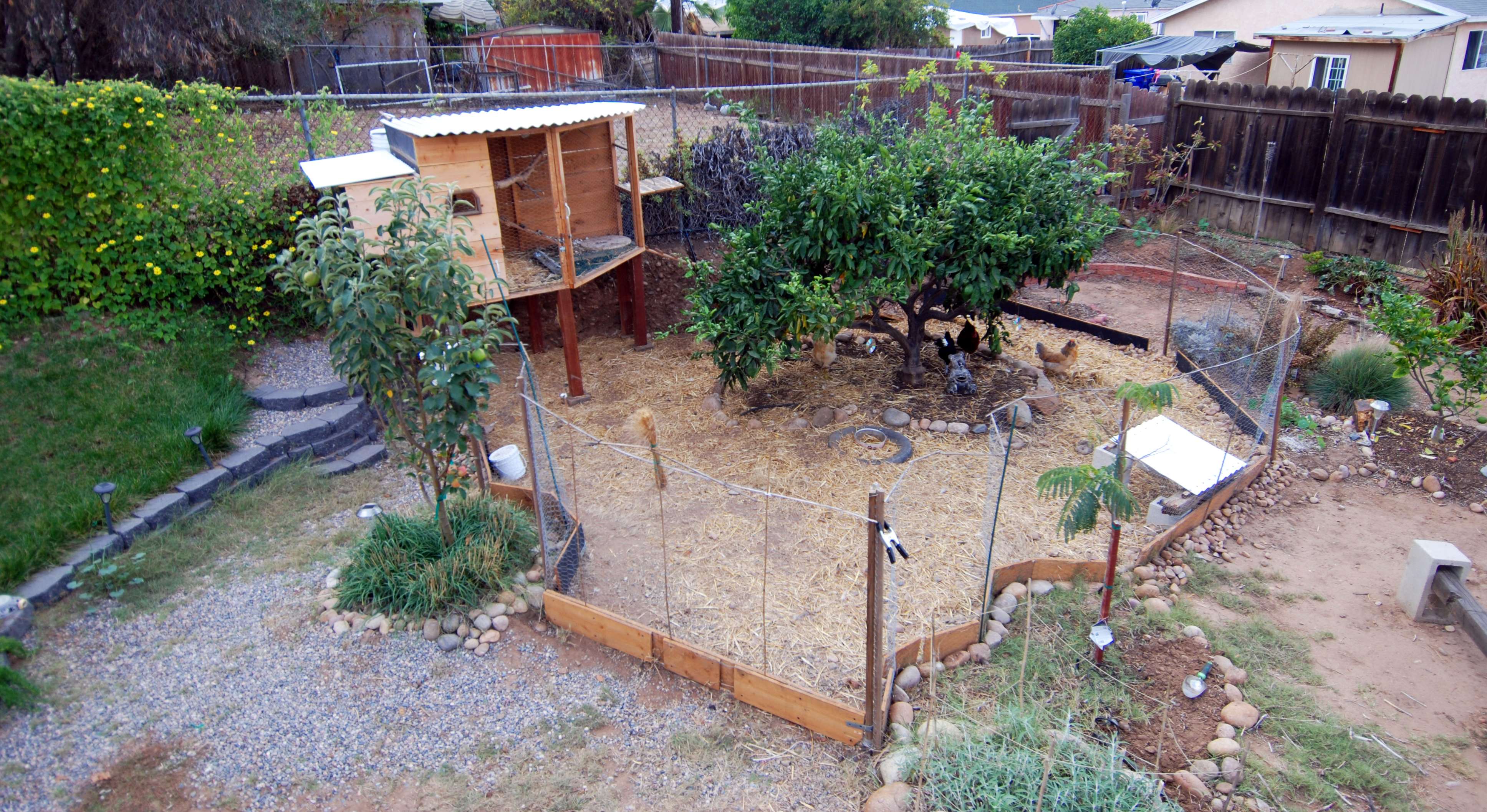 designing and building my own chicken coop mind your dirt