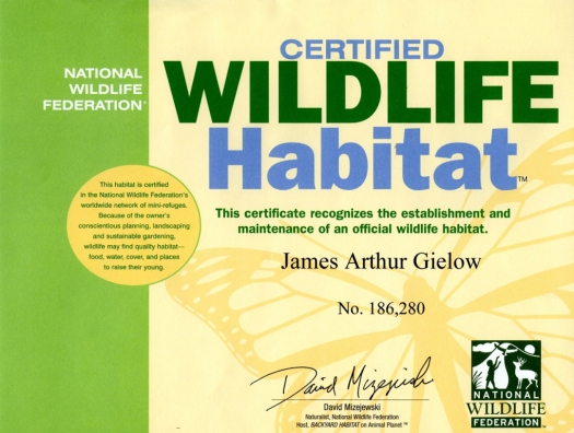 NWF Certificate